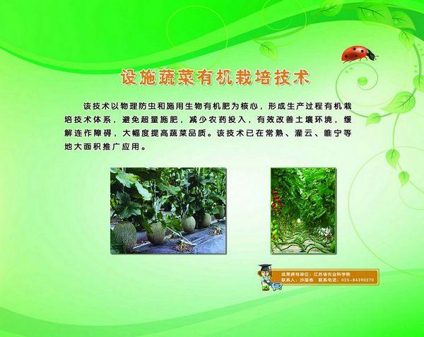 设施蔬菜有机栽培技术